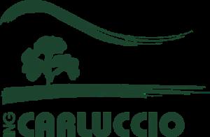 carluccio-logo-web
